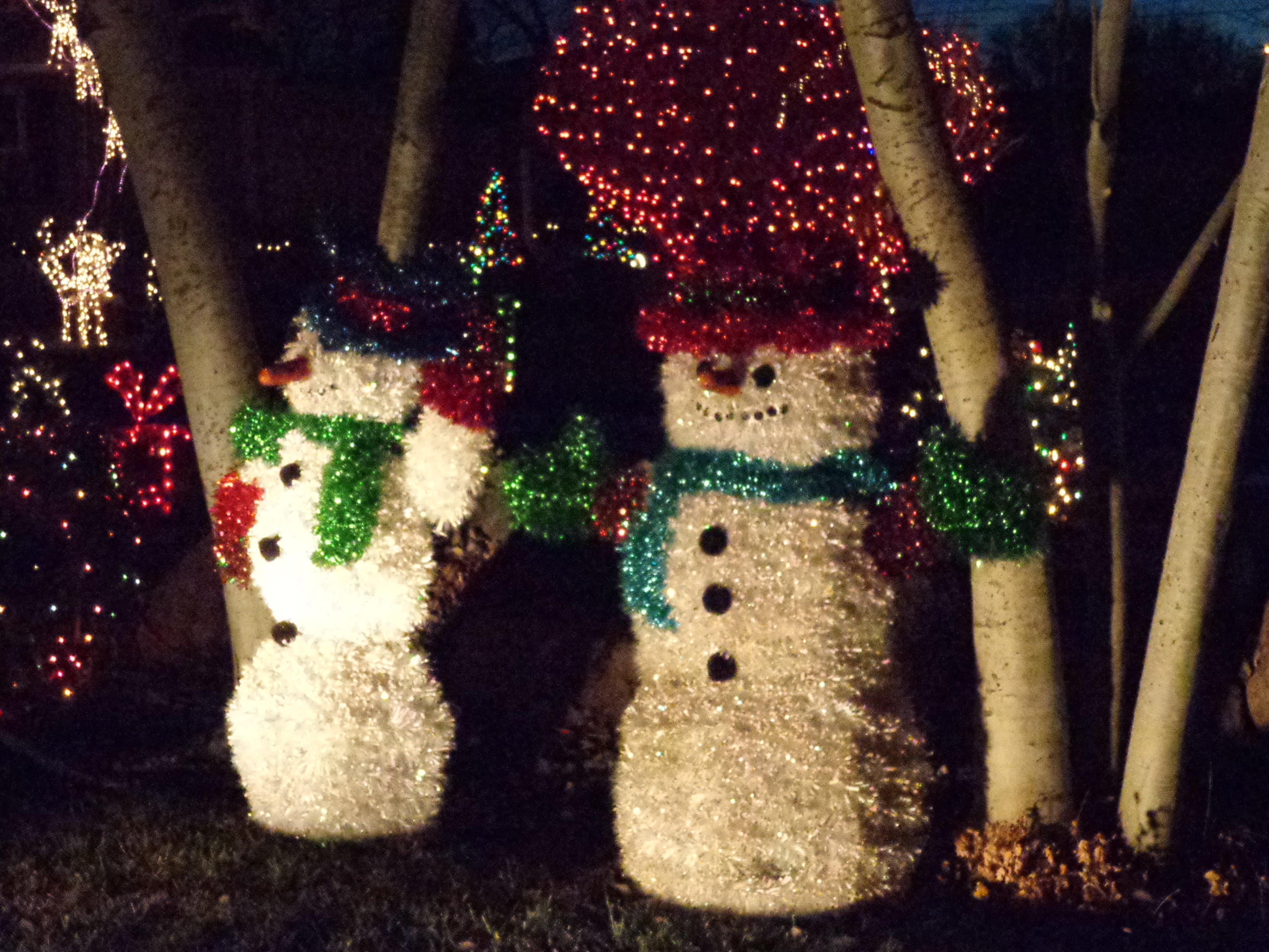 Christmas Yard Decoration 15